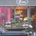 Auf dem Bild sieht man einen Blumenladen, der einen großen Teil seines Angebits auf den Bürgersteig geräumt hat.
