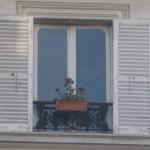 Das Foto zeigt ein Fenster mit hölzernen Fensterläden und einem Blumenkasten, in dem eine einzelne Geranie wächst.