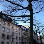 Das Foto zeigt eine Hausfassade, auf die die Morgensonne schöne Muster aus Licht und Schatten zaubert.
