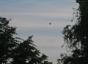 Ballon über den Bäumen