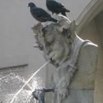 Brunnen in der Münchner Fußgängerzone, auf dessen Kopf zwei Tauben sitzen