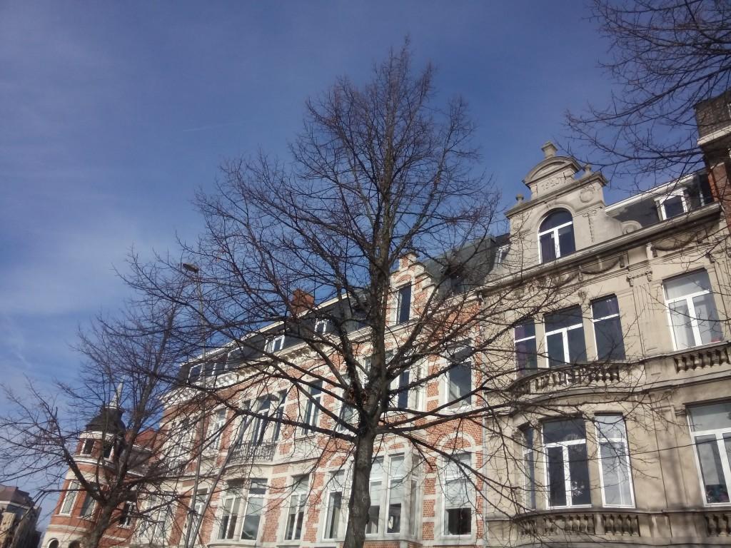 Historische Fassaden am Lauzeude Plein im belgischen Leuven