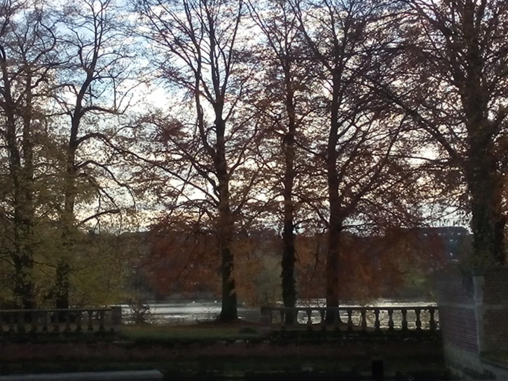 Park des Prämonstratenserklosters mit Laubbäumen und See in der Winternachmittagssonne