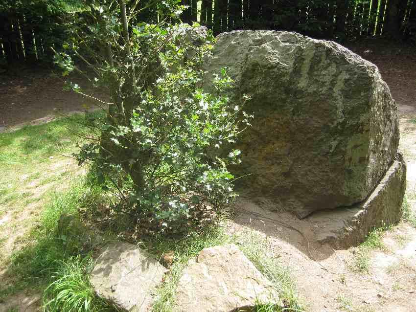 """""""Merlins Grab"""", ein Granitstein und ein kleiner Busch in der Brocéliande"""