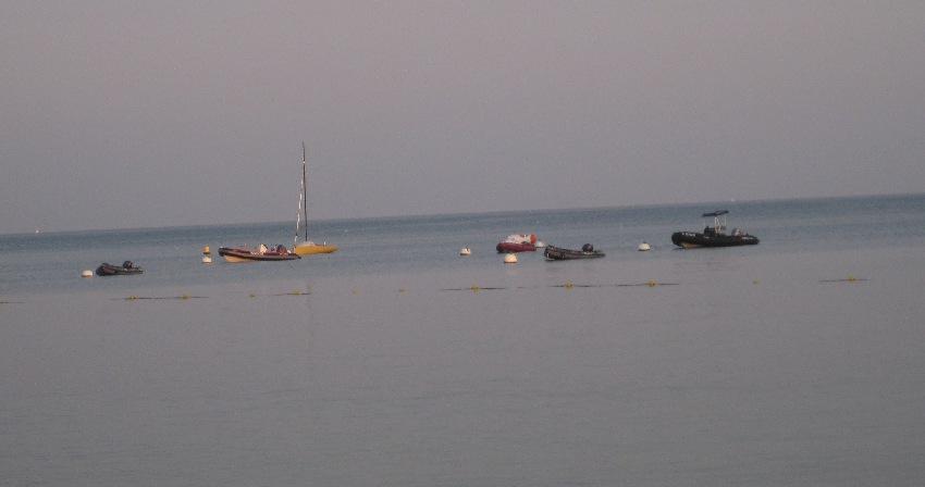 Botte in einer Bucht des Golfe de Morbihan