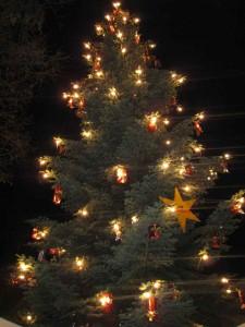 Geschmückter Tannenbaum auf dem Sechtemer Weihnachtsmarkt
