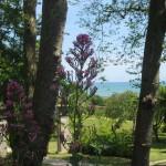 Blick auf die Bucht von Beauport