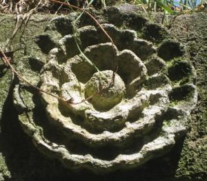 In Stein gehauene Blume in der Abbaye de Beauport