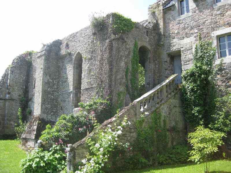 Von vielen Gebäuden sind nur die Grundmauern übriggeblieben, die von Efeu und anderen Pflanzen bewachsen sind