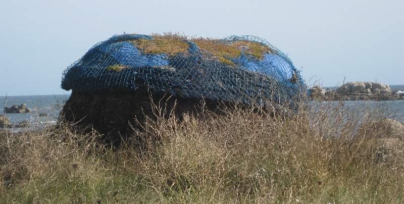 Algensode, die an der Küste vor dem Museumsdorf aufgebaut wurde