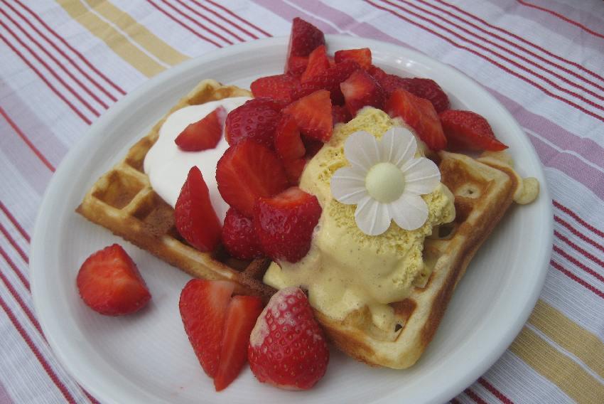 Teller mit einer großen rechteckigen Waffel, Erdbeeren, Vanielleeis, Joghurt und einer Dekoblüte