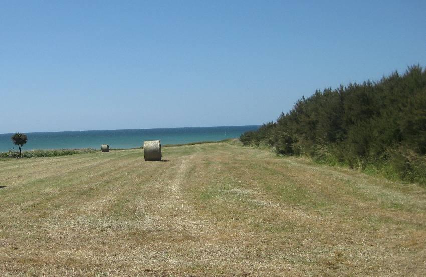 Blick über ein Feld, auf dem Strohballen liegen und das ans Meer angrenzt