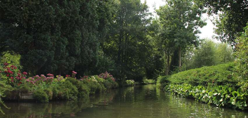 amiens-hortillonages-blumen-am-kanal