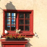 roter Fensterrahmen mit einer Katzenstatue auf dem Fensterbrett im Viertel Saint-Leu in Amiens