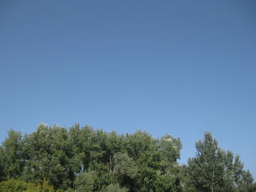 Blauer Himmel über der serbisch-kroatischen Grenze