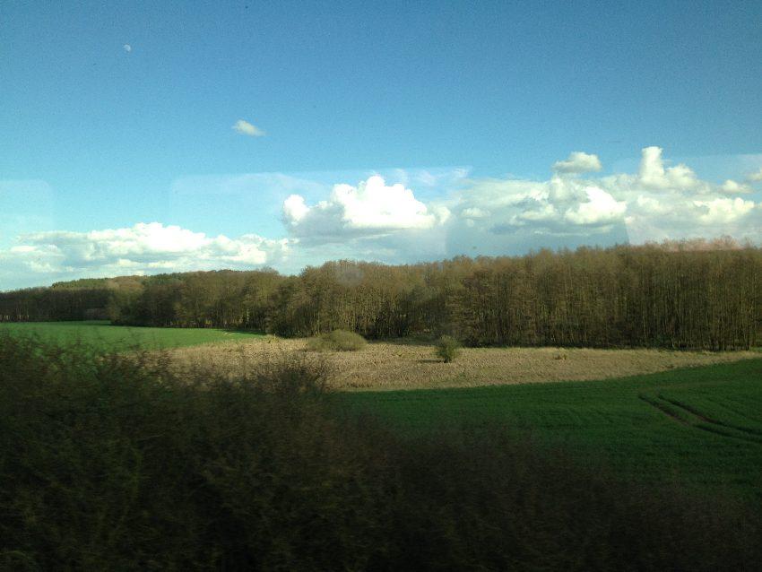 grüne Wiese, unbestelltes Feld und Wäldchen aus dem Zug fotografiert