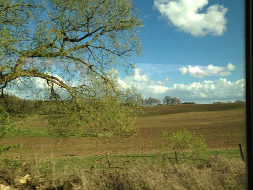 Blick auf frühlingsgrüne Landschaft in Mecklenburg-Vorpommern