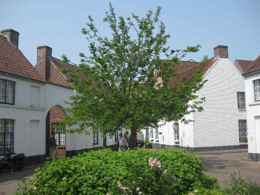 Begrünter Innenhof mitten in Brügge