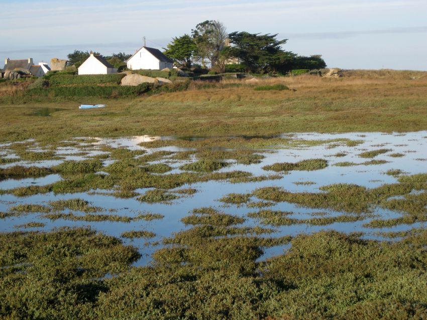 Wasser steht im natürlichen Überlaufbecken der Digue in Kerlouan