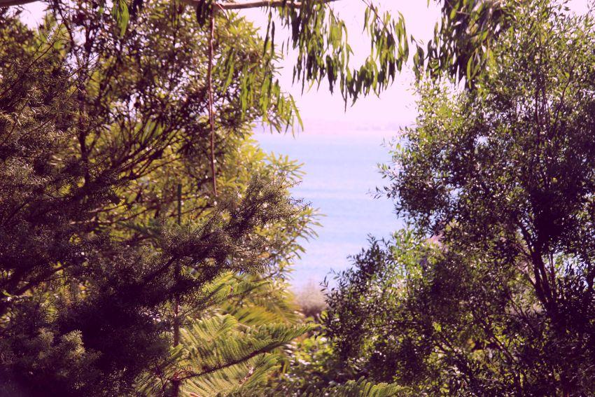 Blick aufs Meer von einer Sitzecke im botanischen Garten in Roscoff