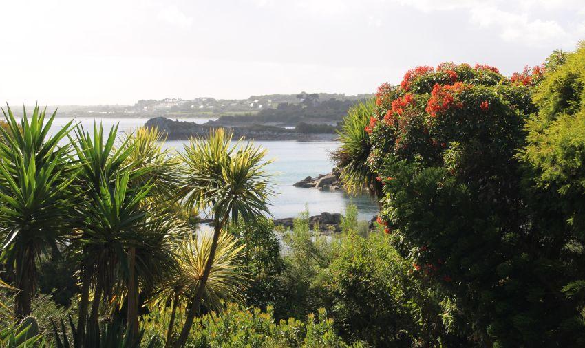 Blick auf die Bucht von Roscoff vom Jardin exotique aus
