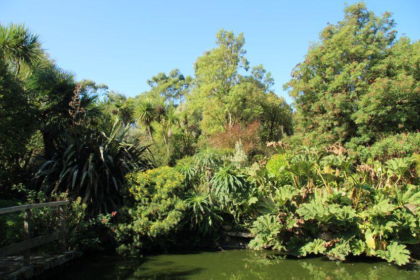 Teich mit Schildkröten im Jardin exotique in Roscoff