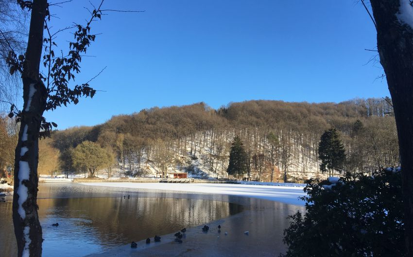 halb zugefrorener See in Blankenheim in der Eifel