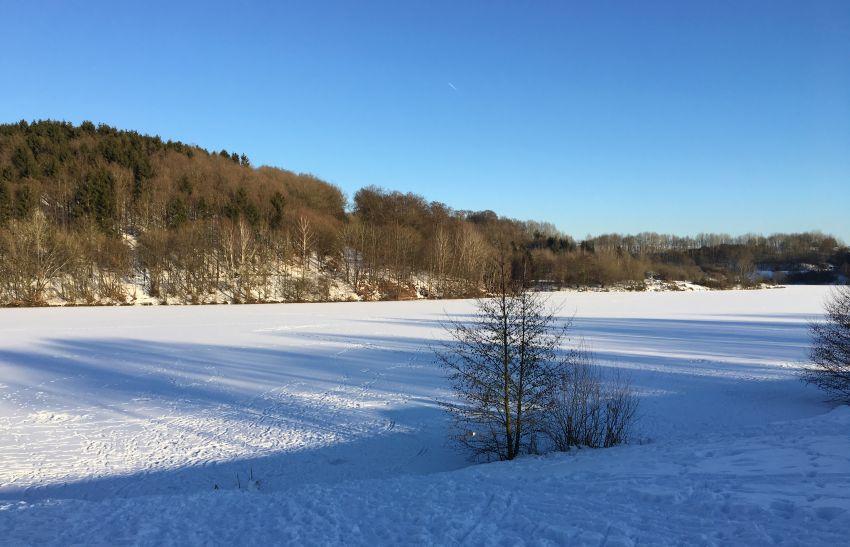am Freilinger See im Schnee