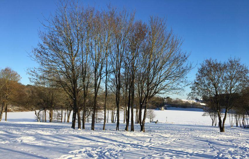 Schnee, Sonne und Eis am Freilinger See in der Eifel