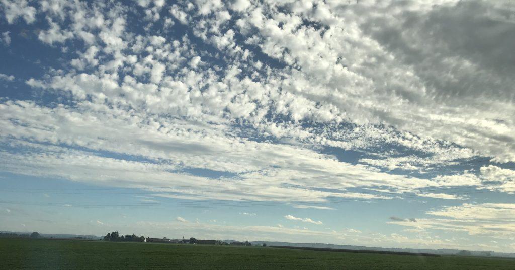 Blauer Hmmel mit zahlreichen weiße Wolken über einer grünen Wiese